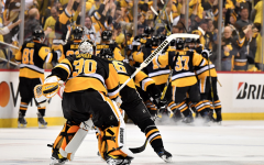 The Race for the NHL Playoffs